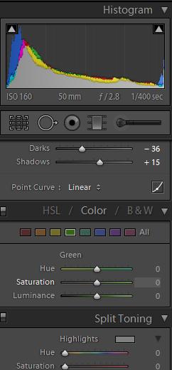lightroom color edit 1